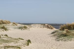 Sanddünen bei Wangerland