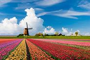 Reiseartikel Niederlande
