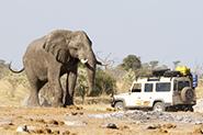 Reiseberichte Simbabwe
