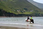 Reiseberichte Wales