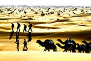 Reiselinks Algerien