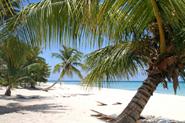 Reiselinks Malediven