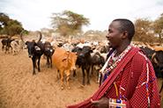 Reisevideos Kenia