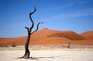 Reisevideos Namibia
