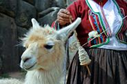 Reisevideos Peru