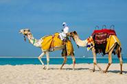 Reisevideos Tunesien